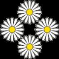 4blumen